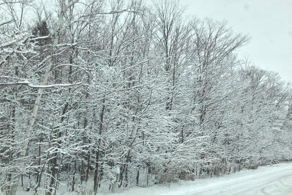 Snowstorm in Door County
