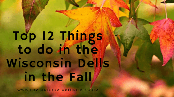 """Fall leaves with """"Top 12 Things to do in the Wisconsin Dells in the Fall"""""""