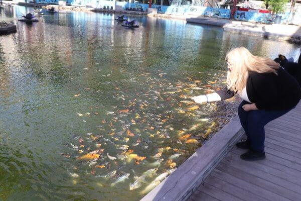 Michelle feeding the Koi