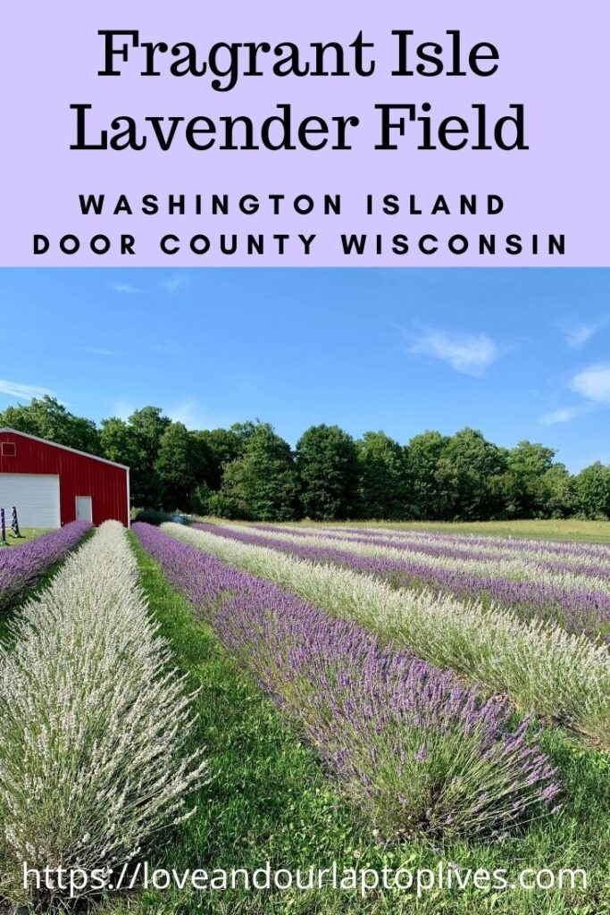Fragrant Isle Lavender Field