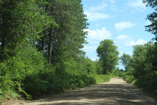 Road in the Chequamegon-Nicolet National Forest