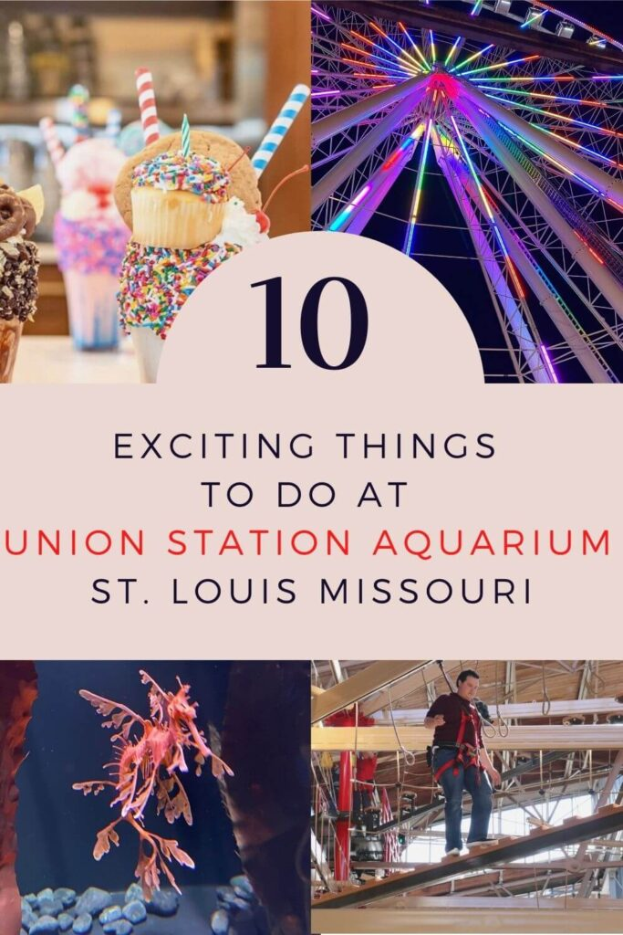 10 Things to do at Union Station Aquarium