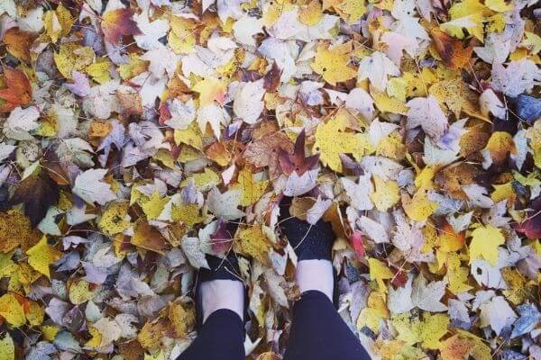 Walking in Fall leaves