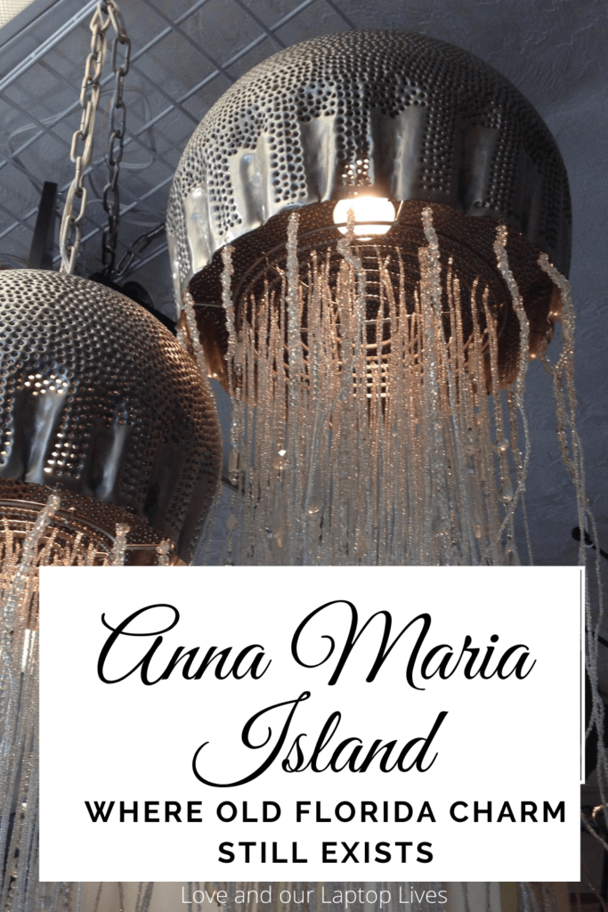Anna MAria Island Jelly fish lights