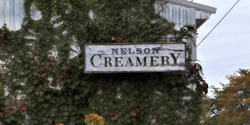 Nelson cheese Factory