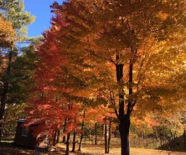 Wisconsin fall road trip