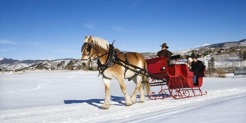 Christmas date idea sleigh ride