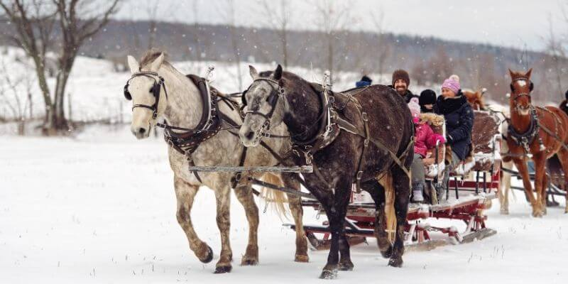A Christmas tradition of taking a sleigh ride