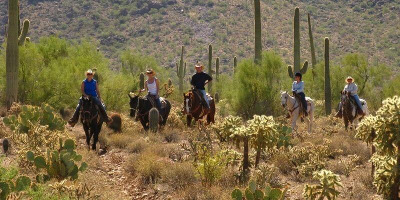 White Stallion Ranch ride