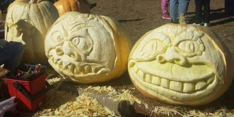 Nekoosa pumpkin carving