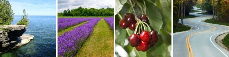Four things for couples to do in Door County Wisconsin. bleaches, lavender fields, cherries and a drive