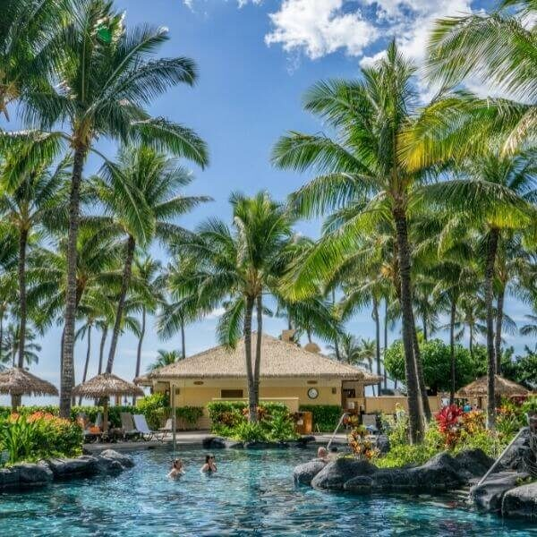 Palm trees and water on a tropical island